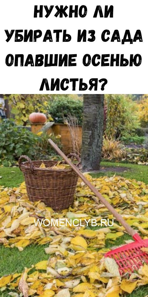 22-udachnye-idei-kak-obustroit-sovsem-kroshechnuyu-spalnyu-9-5889602