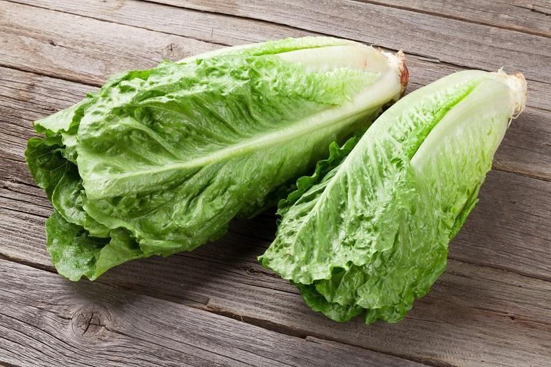 fresh-romano-salad