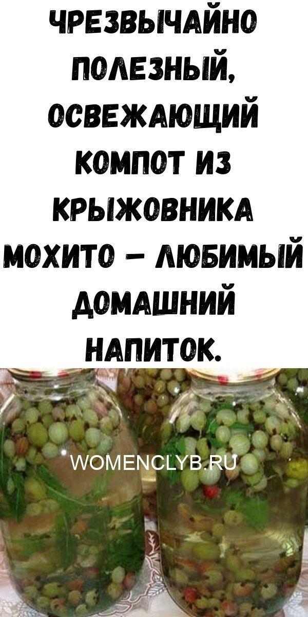 chrezvychayno-poleznyy-osvezhayuschiy-kompot-iz-kryzhovnika-mohito-lyubimyy-domashniy-napitok-6663262