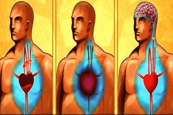 clean-your-arteries-and-prevent-heart-attack-and-stroke-only-with-one-glass-of-this-powerful-drink-7623200