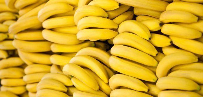 esli-vy-lyubite-banany-to-prochtite-eti-10-shokiruyuschih-faktov-nomer-6-ochen-vazhen-5349529