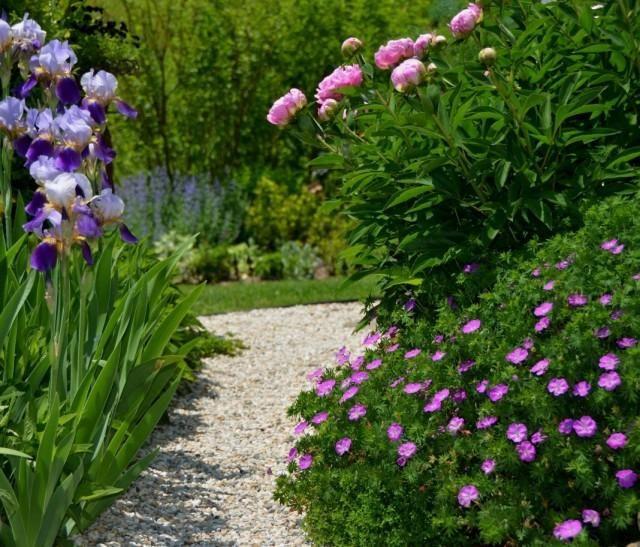 garden-03-640x547-1-2590621
