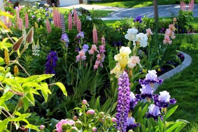 garden-06-640x427-1-9192658