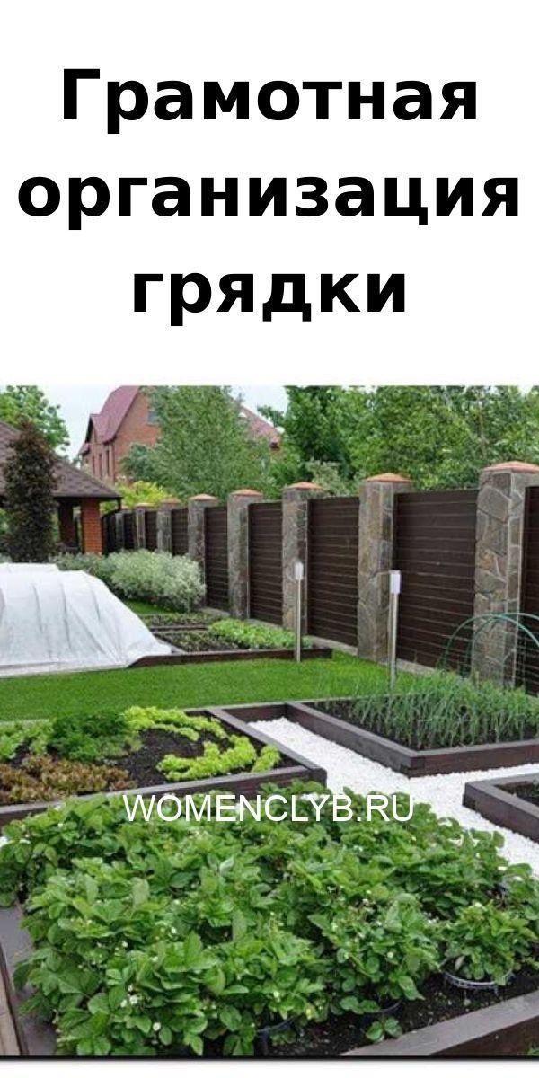 gramotnaya-organizatsiya-gryadki-4410982