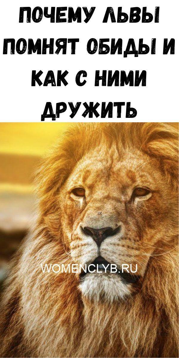 instruktsiya-po-prigotovleniyu-vanilnogo-smetannika-2020-06-11t213853-017-1514255