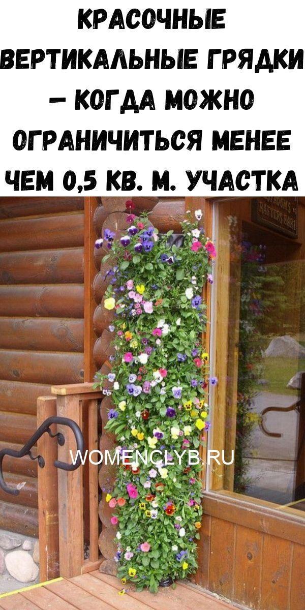 krasochnye-vertikalnye-gryadki-kogda-mozhno-ogranichitsya-menee-chem-05-kv-m-uchastka-3936152