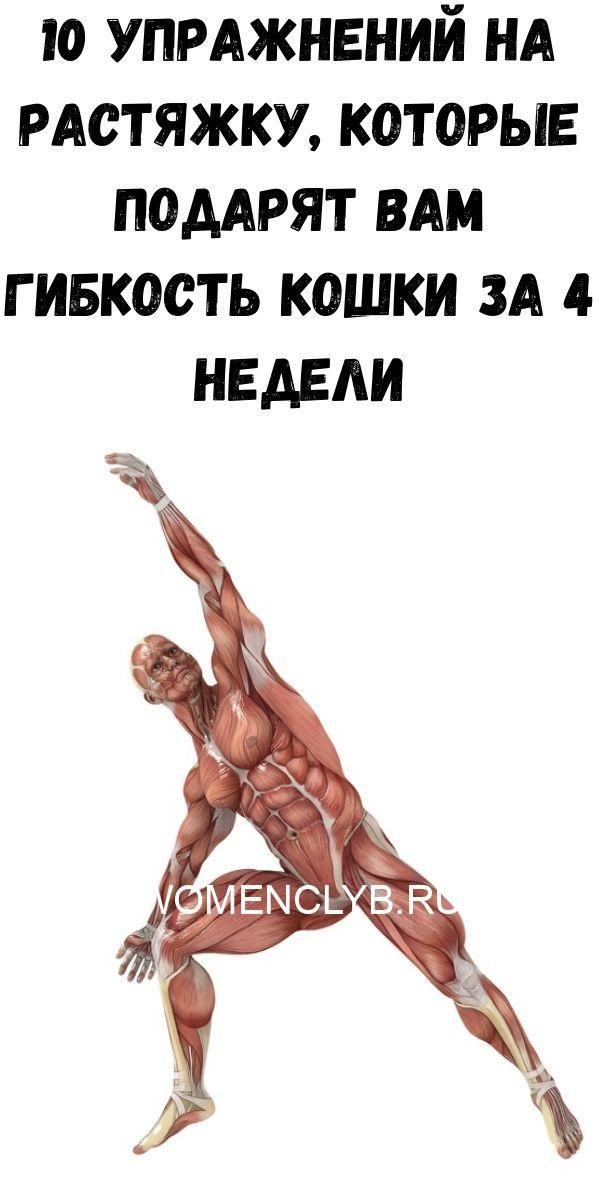 uprazhneniya-dlya-ukrepleniya-poyasnitsy-i-zdorovya-pochek_-vsego-5-minut-v-den-zdorovym-byt-legko-2020-06-06t213233-572-6571435
