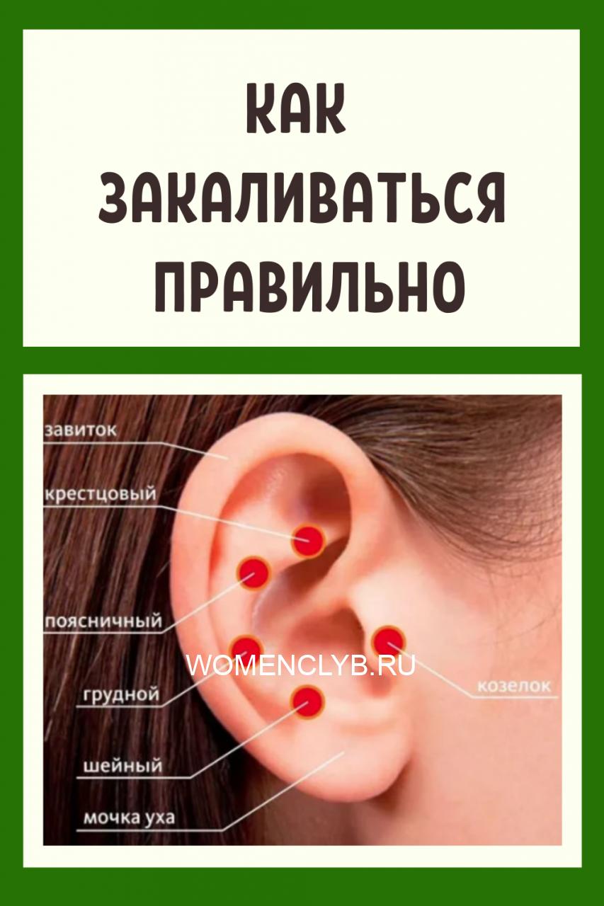 zdorove-kopiya3-8429408