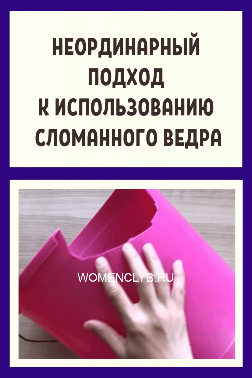 zdorove-kopiya8-2730508